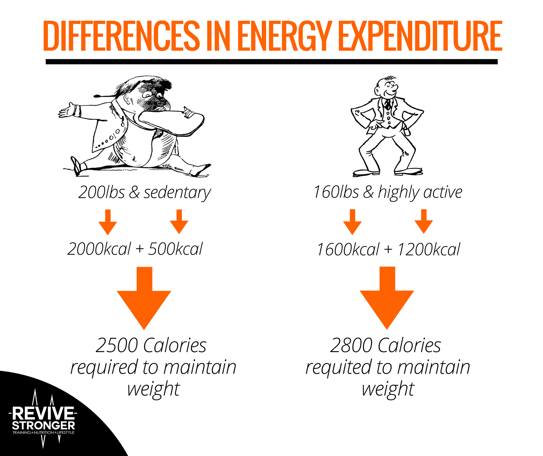 The Calorie Deficit Sweet Spot – Revive Stronger