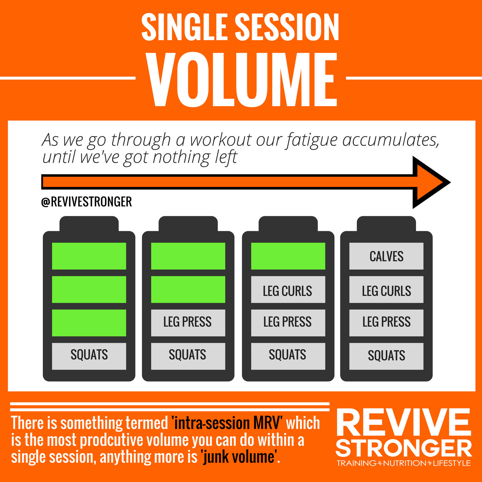 Twice Daily Training for Bodybuilders – Revive Stronger